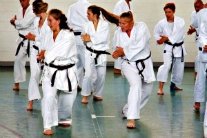 Wado-Pfingstlg._2013_Berlin._Das_Training.jpg